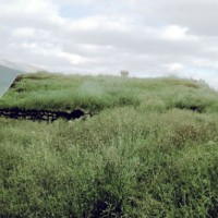 Grass_covered_house_in_Iceland_1972