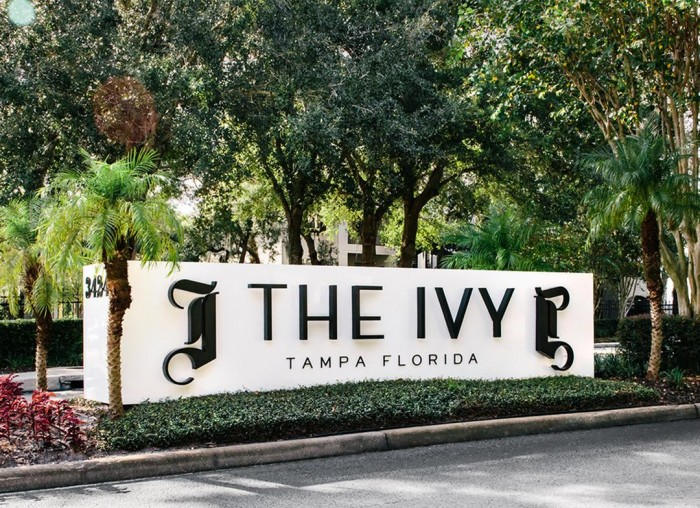 The Ivy apartments in Tampa, Florida