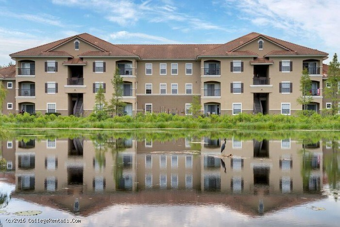 Lakeview oaks apartments in tampa florida for One bedroom apartments in tampa near usf