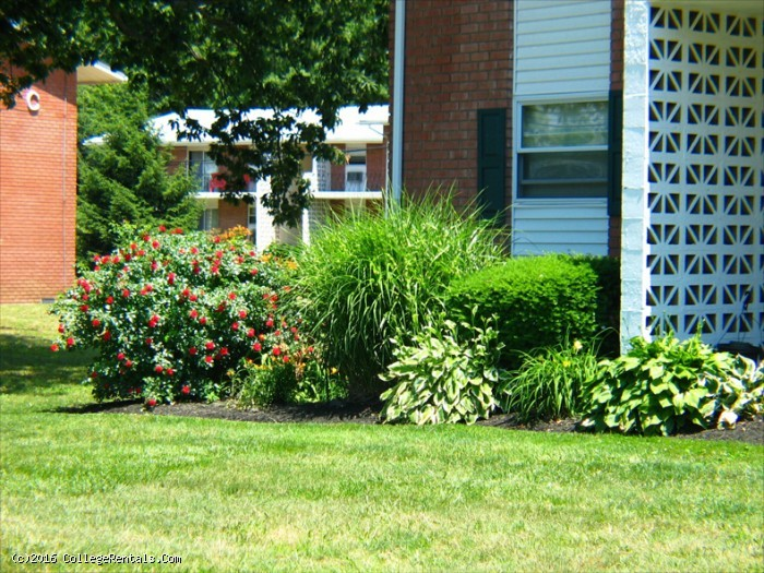Terrace View apartments in Toms River, New Jersey