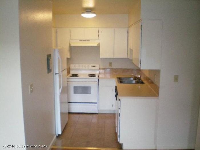 Greentree apartments in bozeman montana for One bedroom apartments in bozeman mt
