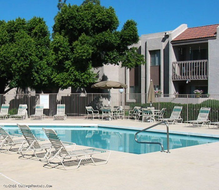 Spring Meadow Apartments In Glendale, Arizona