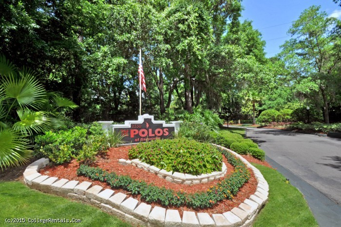 The Polos apartments in Gainesville, Florida