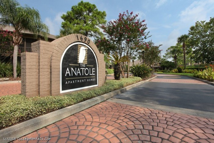 College Apartments In Daytona Beach Florida
