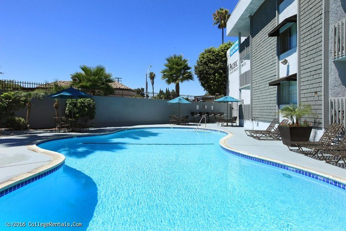 Apartments For Rent Near California State University Long Beach