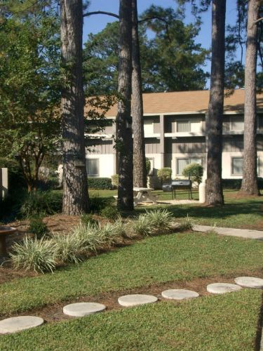 Pinetree Gardens Apartments In Gainesville Florida