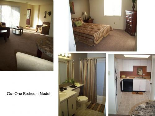 Furnished Apartments For Rent Indianapolis