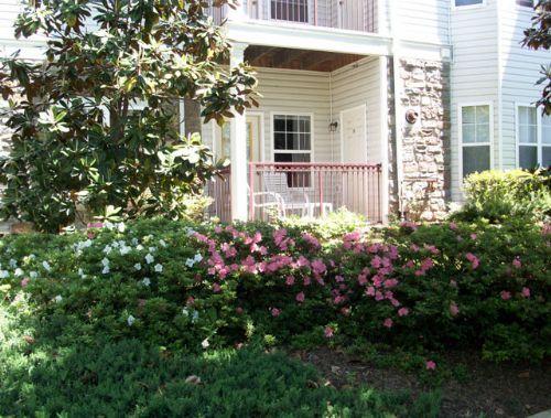 Lincoln at fair oaks apartments in fairfax virginia for 1 bedroom apartments in fairfax va