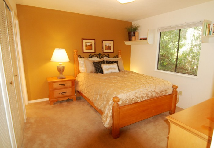 Treehouse Village Apartments In Gainesville Florida