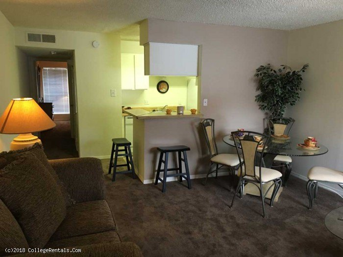 University Commons Apartments In Edinburg Texas